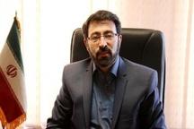 زمینه تحصیل دانش آموزان معلول در کرمان فراهم است