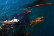 پاکسازی آلودگی نفتی خلیج فارس با موفقیت انجام شد