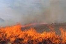 مهار آتش سوزی گسترده در باشت