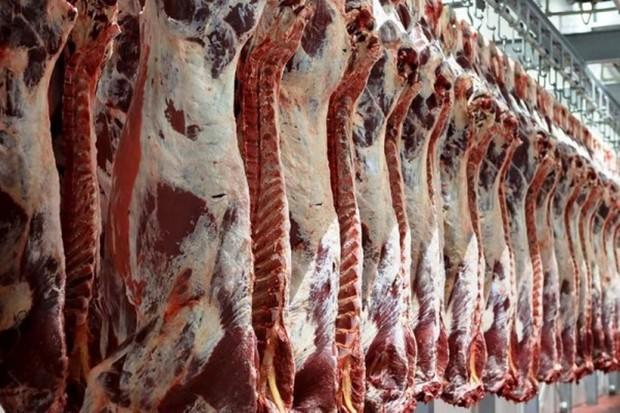 30 تن گوشت قرمز در جاسک توزیع می شود