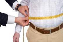 سرپرست شبکه بهداشت دیر:چاقی و اضافه وزن سلامت مردم این شهرستان را تهدید می کند
