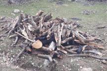 یک دهنه کوره زغال گیری و ادوات آن در مریوان شناسایی شد
