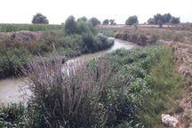 چاه های آب غیرمجاز به تهدیدی جدی برای محیط زیست و منابع آب دزفول تبدیل شده اند