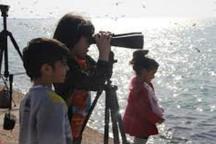 ثبت نخستین باشگاه پرنده نگری در استان بوشهر