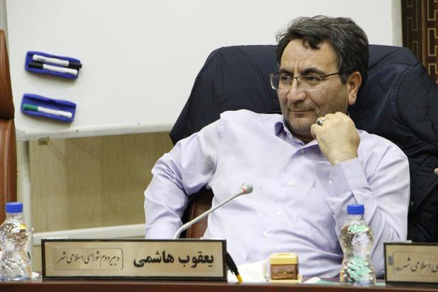 مدیران اجرایی از مشاورههای شوراها بهره بگیرند