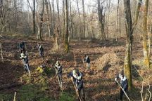 مطالبات کارکنان طرح حفاظت جنگل با تهاتر حل میشود