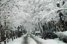 بارش برف برخی مدارس استان سمنان را تعطیل کرد