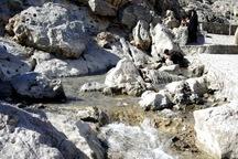 آب چشمه غربالبیز مهریز جاری شد