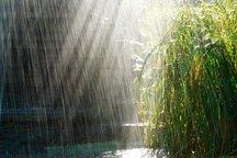 سامانه جدید بارشی وارد بوشهر می شود