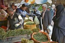 سفره های آذربایجان غربی با غذاهایی از گیاهان کوهی تزئین شد