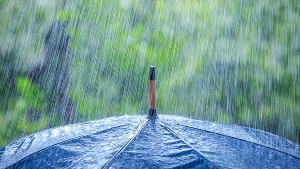 بارش 17 میلی متر باران تابستانی همراه با تند باد در برازجان بوشهر
