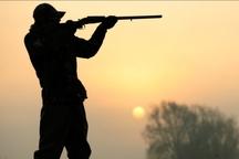 شکارچیان «باکلان» در ملایر به حبس محکوم شدند