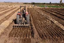 7.3هزار هکتار از زمین های کشاورزی دلگان زیر کشت گندم رفت