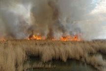 عاملان آتش سوزی تالاب هورالعظیم دستگیر شدند