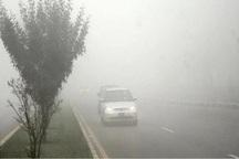 مه غلیظ در جاده های خراسان رضوی پدیده غالب است