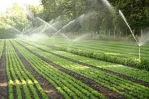 510 هکتار اراضی کشاورزی میامی به سامانه آبیاری نوین مجهز شد