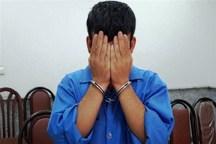 سارق حرفه ای اشیای داخل خودرو در دماوند دستگیر شد