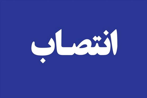 مدیر کل روابط عمومی و امور بین الملل استانداری فارس منصوب شد