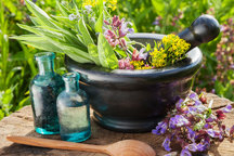 سالانه 15هزار تن گیاهان دارویی در همدان تولید می شود