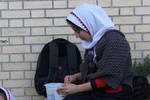 دانش آموزان انجمنی کشور غذای نذری توزیع کردند