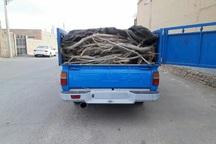 افزون بر یک تن چوب تاغ قاچاق کشف شد