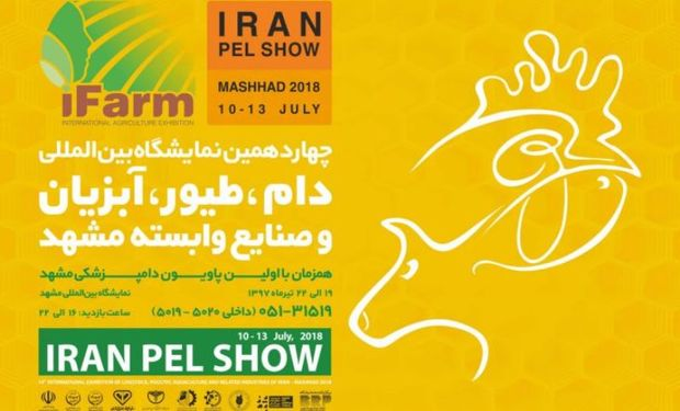 نمایشگاه بین المللی دام و طیور در مشهد گشایش یافت