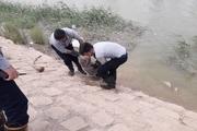 پیرمرد 70 ساله در رودخانه بهمنشیر آبادان غرق شد