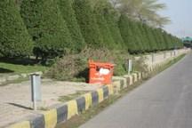 'تنگی نفس' پائیزه در راه است  مهلت یک ماهه شهرداری اهواز برای هرس 'کونوکارپوس'