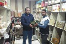 طرح نه به کیسه های پلاستیکی در بوشهر اجرا شد