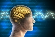 روشهای نوین ردیابی فعالیتهای مغز و قلب با دستگاه ام.آر.آی