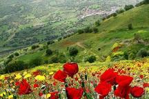 هنرنمایی اردیبهشت در طبیعت کم نظیر کردستان - عبدالله رحمانی*