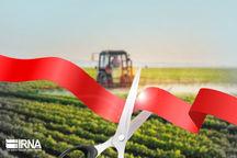 ۵۹ پروژه کشاورزی در استان تهران افتتاح میشود