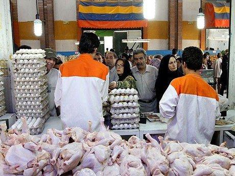 مرغ تا نیمه شهریور گران نمی شود