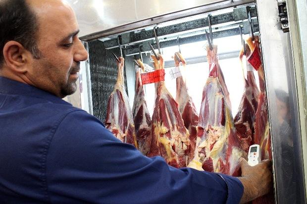 ورود بیش از 2 میلیون کیلوگرم گوشت دام به بازار مصرف زنجان