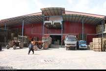 صنایع تبدیلی کشاورزی بروجرد پاسخگوی نیازشهرستان نیست