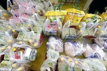 500 سبد غذایی در ایرانشهر توزیع شد