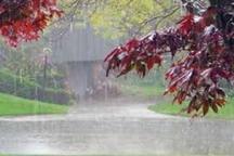 بارندگی در گنبدکاووس 14 درصد افزایش یافت