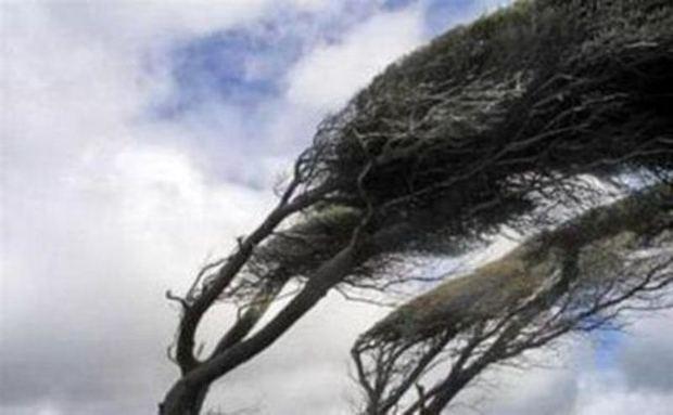باد تند مناطقی از البرز را درنوردید