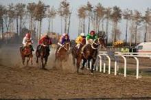 رقابت 52 راس اسب در هفته دهم مسابقات اسبدوانی کورس پاییزه گنبدکاووس