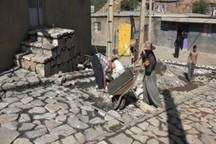 طرح هادی در بیش از یک هزار روستای فارس اجرا شده است