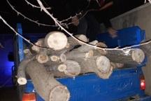 محموله چوب قاچاق در تالاب سد نوروزلوی میاندوآب متوقف شد