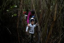 ترامپ تهدید کرد مرزهای این کشور با مکزیک را می بندد