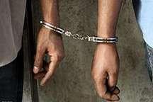 دستگیری سارقان اماکن و منازل خصوصی با 22 فقره سرقت درکرج