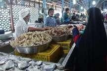 تعداد بازارهای عرضه ماهی درشهربندرعباس افزایش می یابد