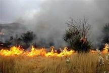 آتش بیاحتیاطی گردشگران به جان نحیف مراتع مهریز افتاد