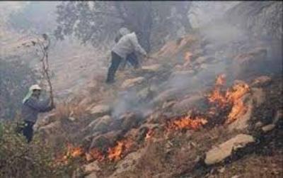 آتش سوزی در بخش کوهستانی و صعب العبور پارک ملی گلستان