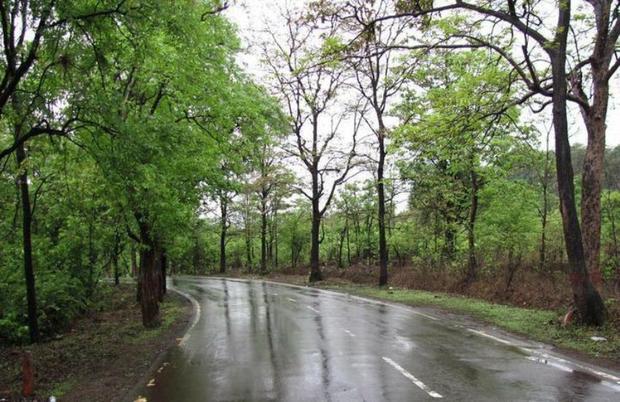 سامانه بارشی همراه با وزش باد نسبتا شدید در راه است