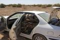 دستور دادستان برای برخورد با قاچاقچیان چوب در نظرآباد