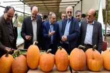 قدیمی ترین دامداری صنعتی البرز حمایت می شود