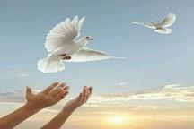 آزادی ۳۰۱ زندانی جرایم غیرعمد توسط ستاد دیه آذربایجانغربی در سال ۹۶